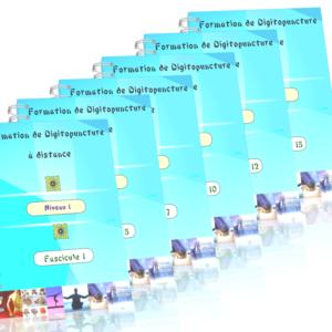 Fascicule_DigitoNiv1_15F2applatis_3d