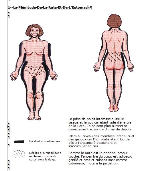 Page de démonstration du fascicule N° 3 de la Gestion du Poids par la médecine chinoise