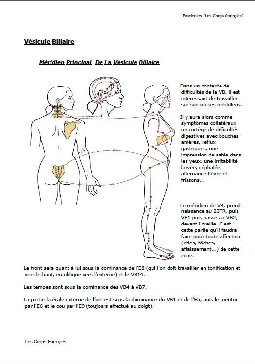 Page de démonstration du fascicule N° 4 lifting énergétique par la médecine chinoise